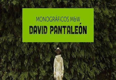 Monográficos. David Pantaleón