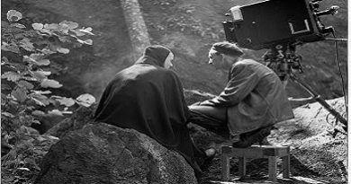 Bergman su gran año