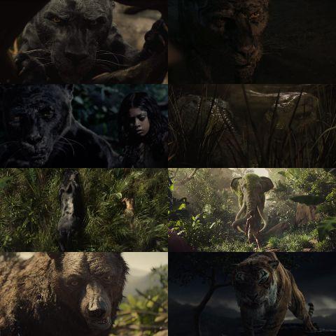 Mowgli la leyenda de la selva