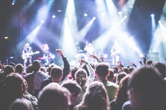 ratos muertos de los festivales