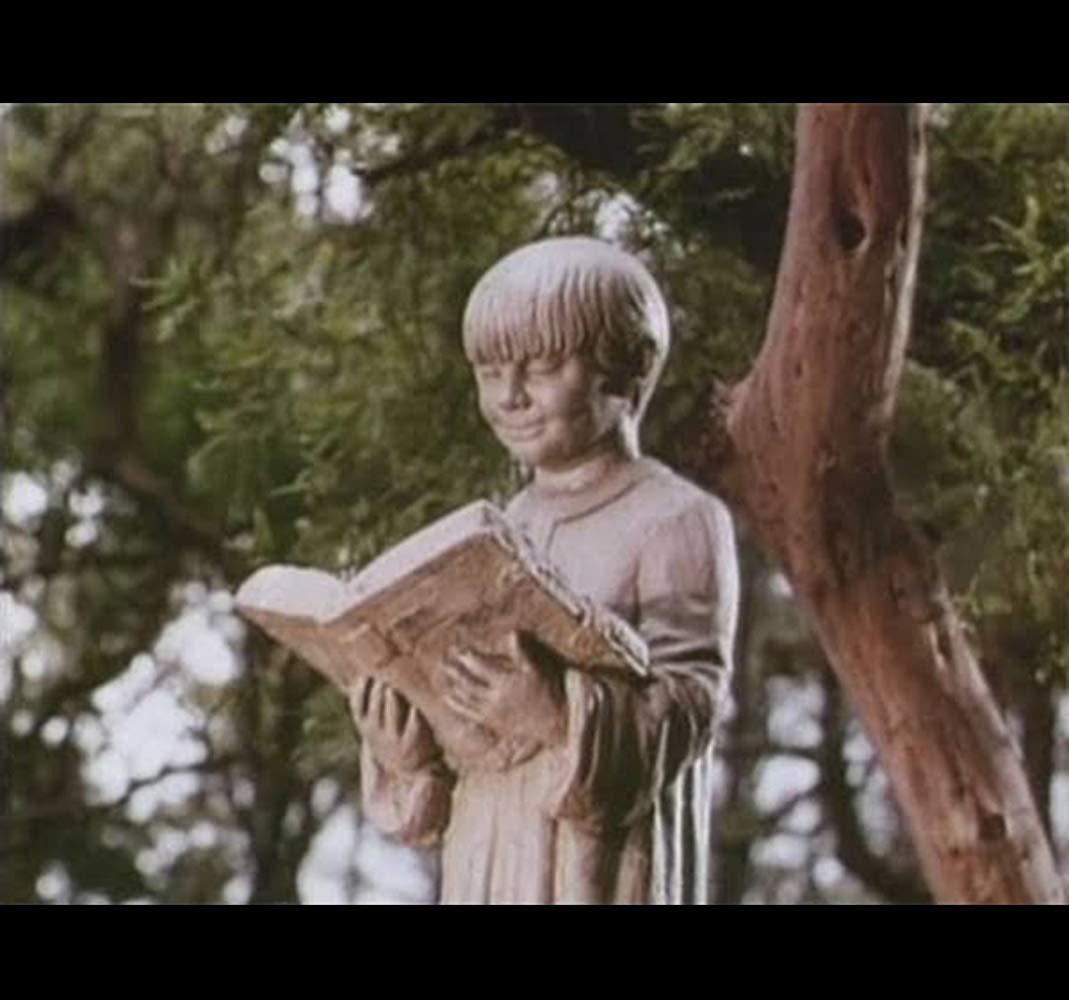 El libro de piedra