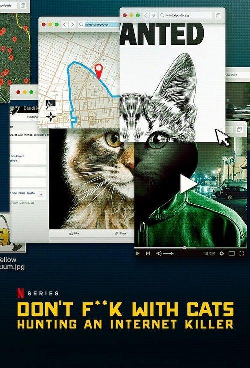 A los gatos ni tocarlos: Un asesino en internet
