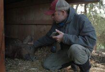 documental Mi gran pequeña granja
