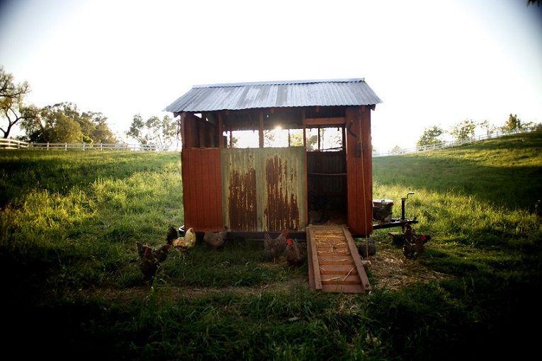 Mi gran pequeña granja
